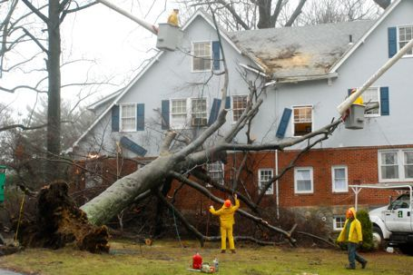 Boca Raton Public Insurance Adjuster Call Now Wind Damage Wind