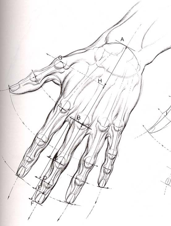 hand drawing | sketch | Pinterest | Hand drawn, Drawing reference ...