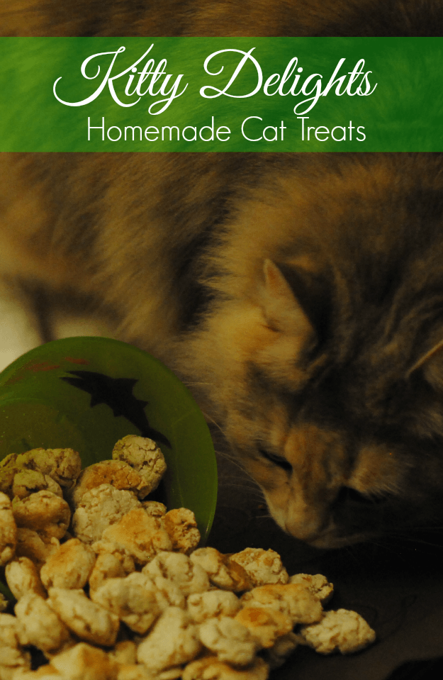 Keeping Our Fur Babies Happy Homemade Cat Food Cat Treats Pet