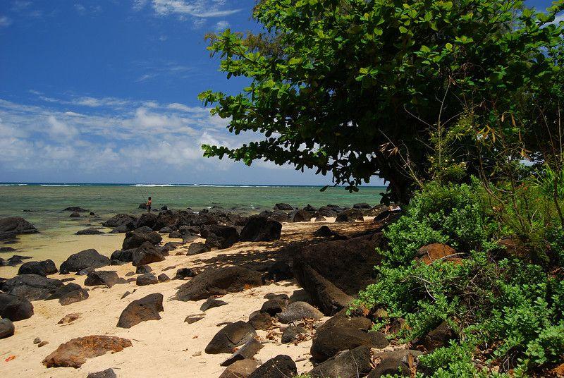 Google Image Result for http://volcanoimage.smugmug.com/Hawaii/Kauai-May-7-9-2010/DSC0577/862918391_iqJks-L.jpg  This is the Beach Allan and I said I Do.. Anini Beach Kauai