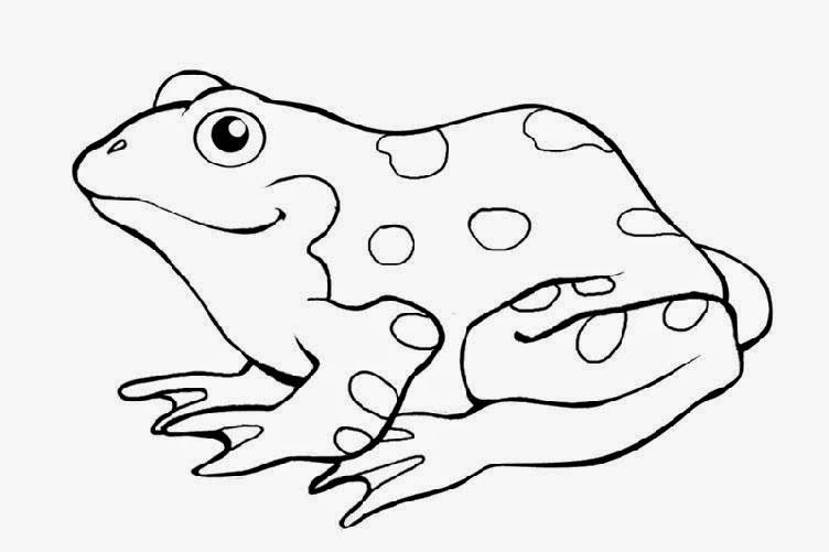 Free Frog Coloring Pages To Print Out And Color Colouring Images