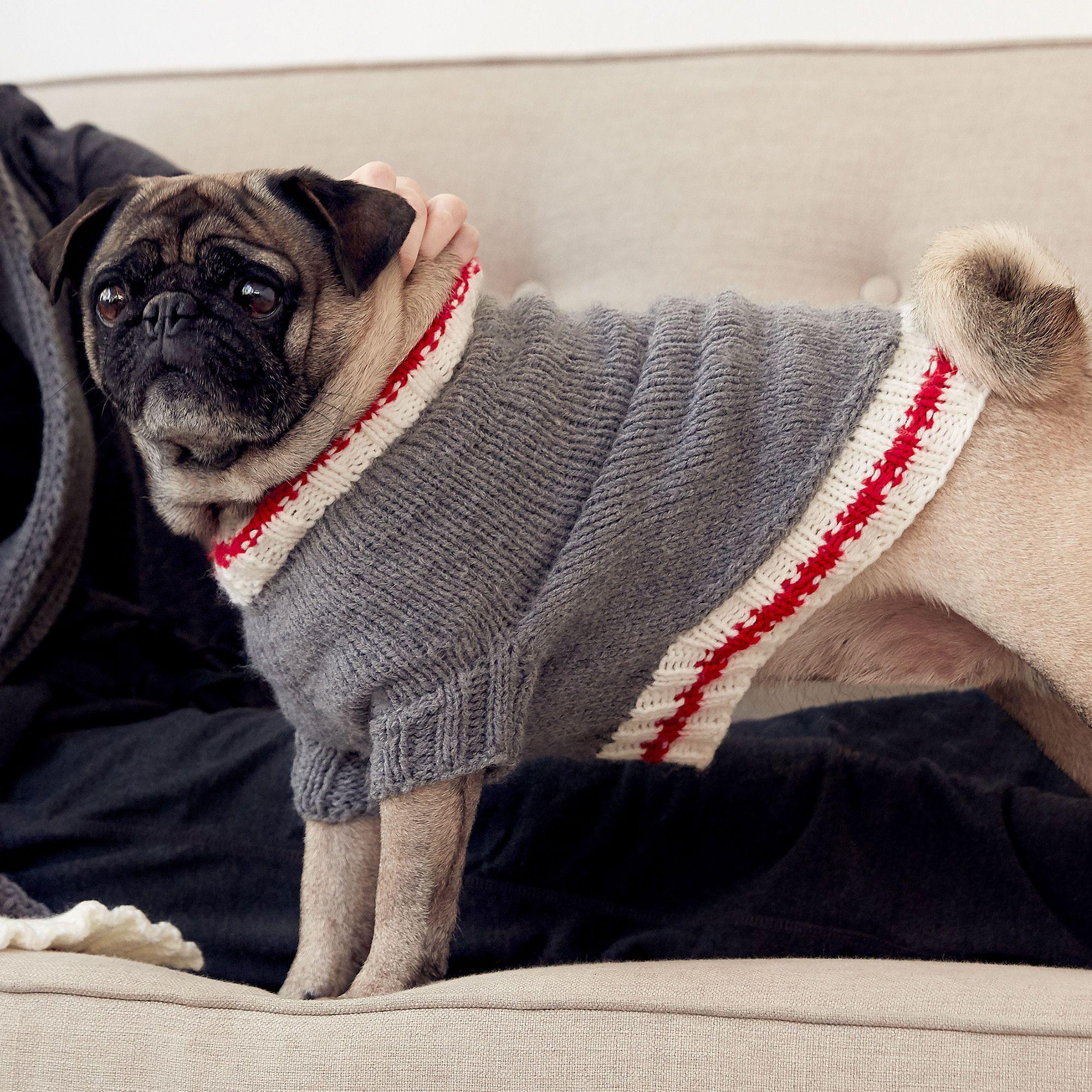 Bernat Knit Work Sock Dog Coat, S Pattern | Yarnspirations ...