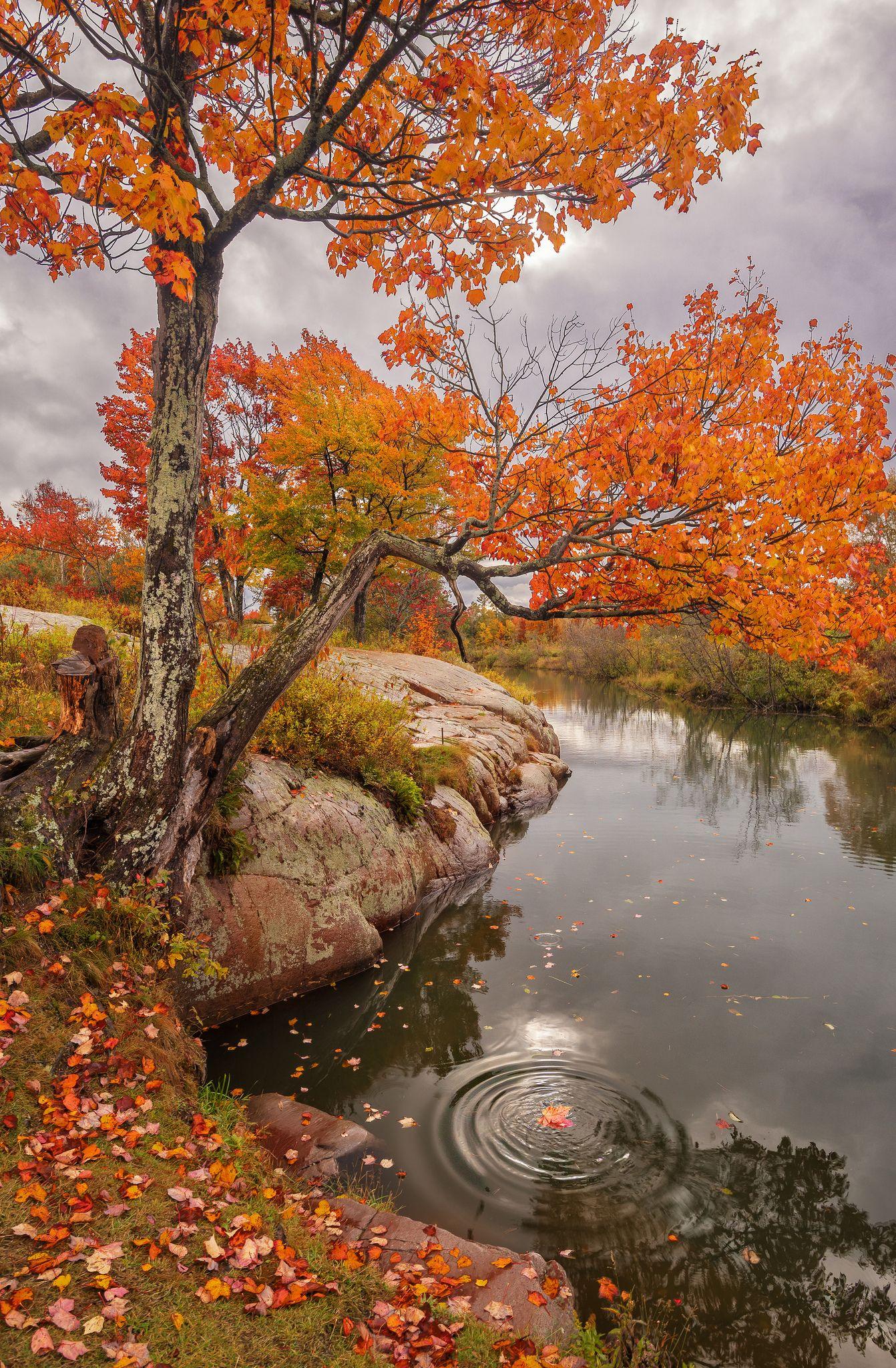 Chikanishing Autumn Autumn Scenery Autumn Landscape Fall Pictures