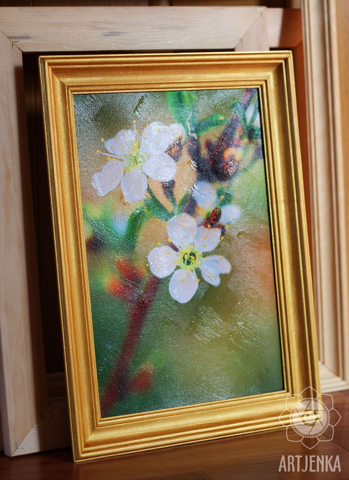 Цветы вишни. Фото Evgenia Shveda