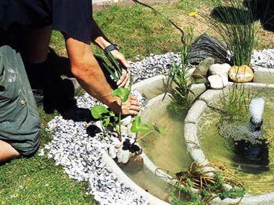 Hacer un peque o estanque en el jard n estanques y for Peces para fuente exterior