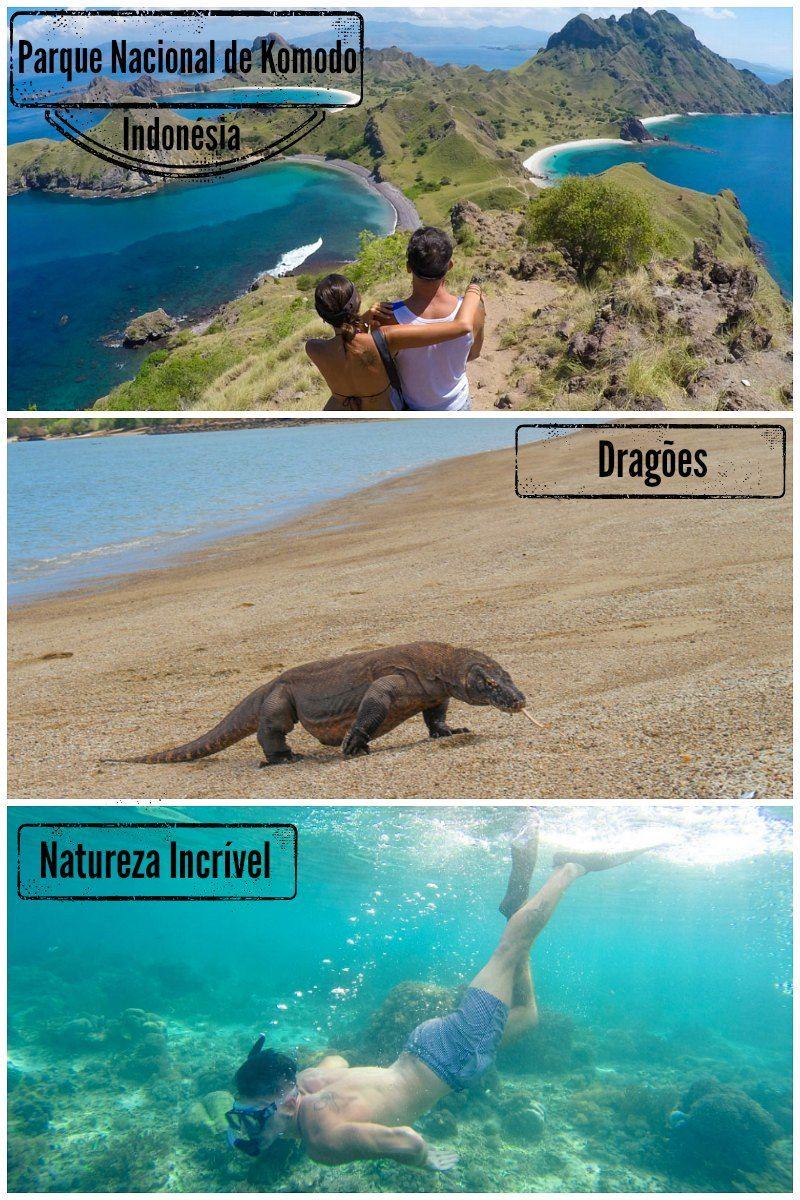 Ilha de Komodo: Dragões e Paisagens de Tirar o Fôlego! Tudo que você precisa para planejar sua viagem a Ilha de Komodo na Indonésia. Como chegar, onde ficar, passeio, os dragões de Komodo, mergulho e muito mais. via @loveandroad