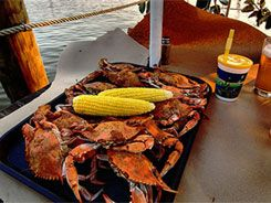 Mike S Crab House Annapolis Crabs Seafood Restaurant Maryland
