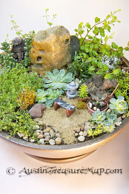 """Grandma's Zen Fairy Garden - just 12"""" across, and portable so she can put it by her bed or by her chair on the deck.  In the back is Sedum Coral Carpet, Hot and Spicy Oregano, and Russian Oregano.  The little polymer clay rake I made is 1.5"""" long and can be used to tidy up the sand or knock bits of dirt out of leaves."""