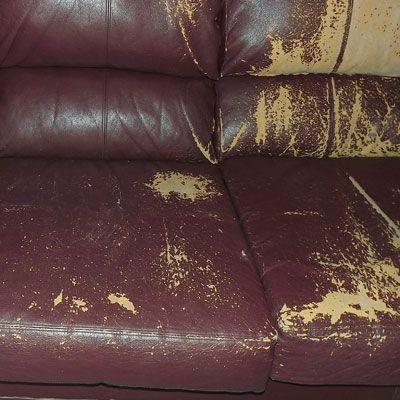 Bonded Leather Sofa Peeling | Cleaning/Organizing | Pinterest