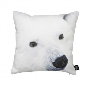 Baby Polar Bear Snout, 30x30 cm