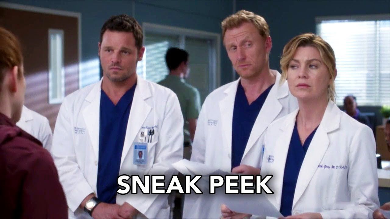 Greys Anatomy 14X12 — Sceneups