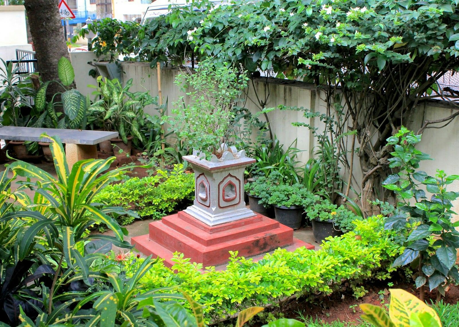 Indian Home Garden  Indian garden, Garden ideas india, Diy