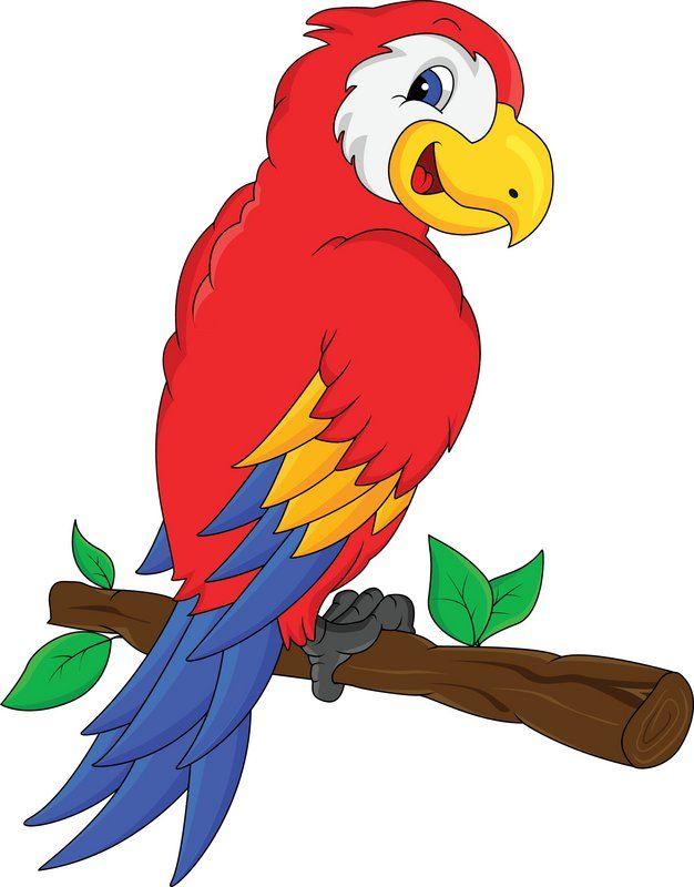 Parrot Cartoon Cartoon Birds Cartoon Animals