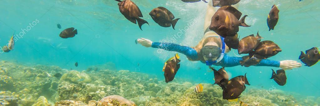 mask dive underwater with tropical fishes in coral ree Happy woman in snorkeling mask dive underwater with tropical fishes in coral ree woman in snorkeling mask dive unde...