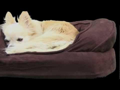 Ortho Bolster Sleeper Dog Bed #orthopedic_dog_beds #orthopedic_dog_beds_for_large_dogs.dog_beds