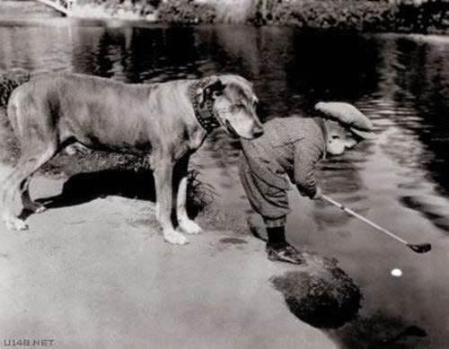 Niños y perros, ¡amigos inseparables! | Cuidar de tu perro es facilisimo.com