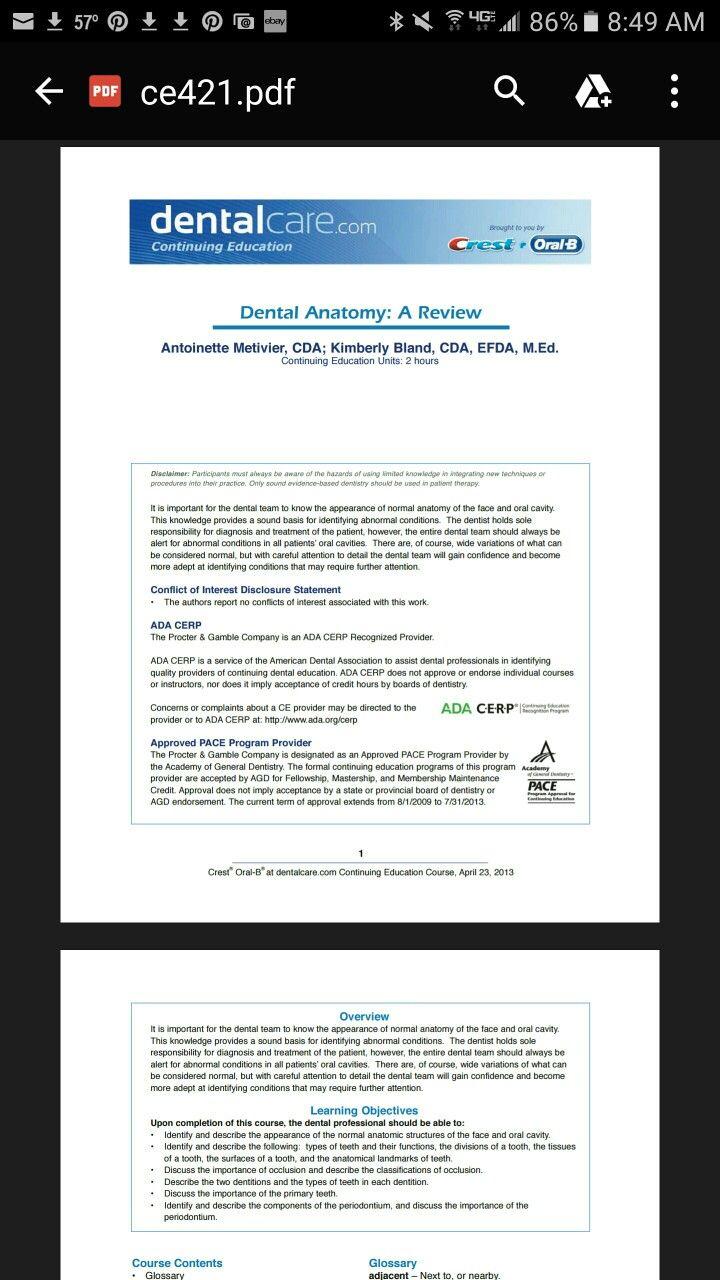Dentalcare.com dental anatomy review | Head & Neck Anatomy ...