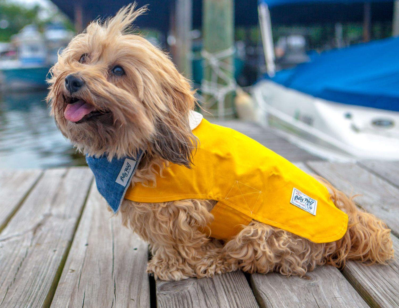 Dog Co Billy Wolf Milly Jacket Boyd Bandana Dog Clothes