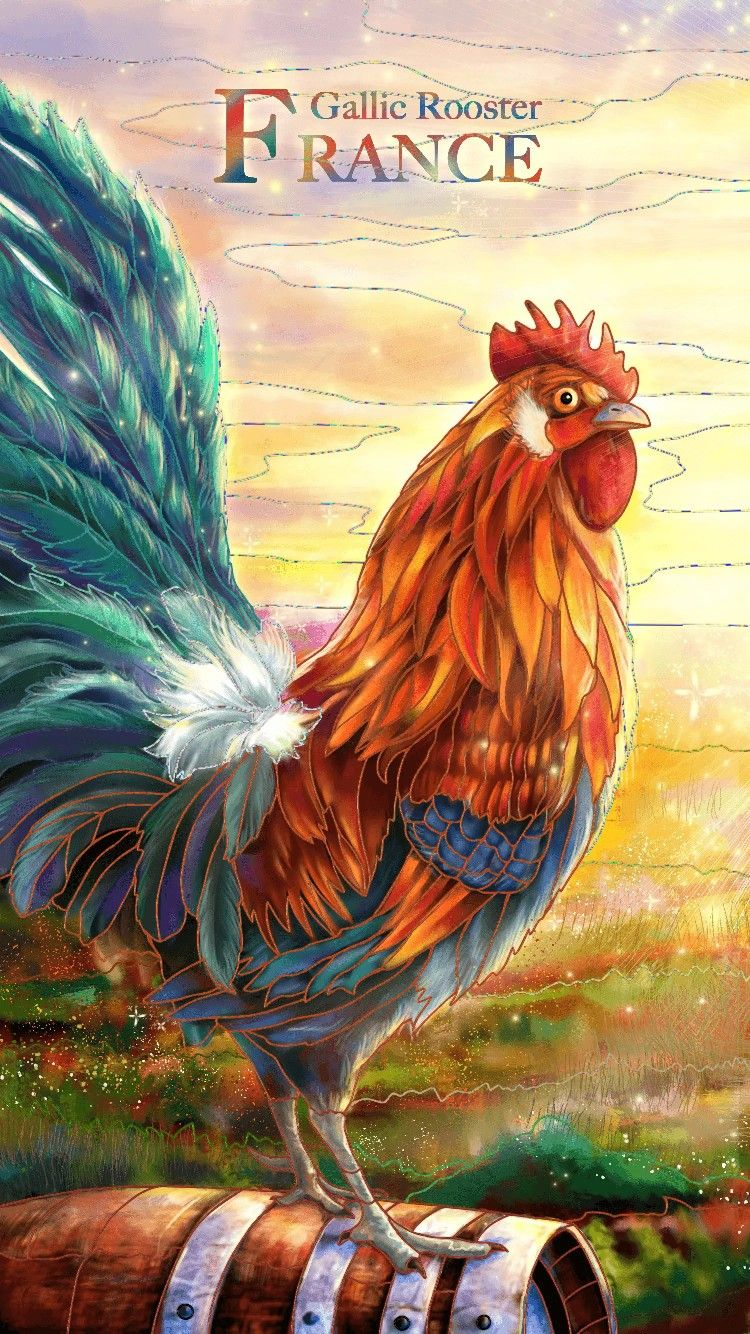 Fond D Ecran Rooster Paint By Number National Animal
