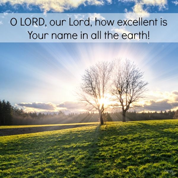 O LORD, Our Lord, Your Majestic Name Fills The Earth! Your