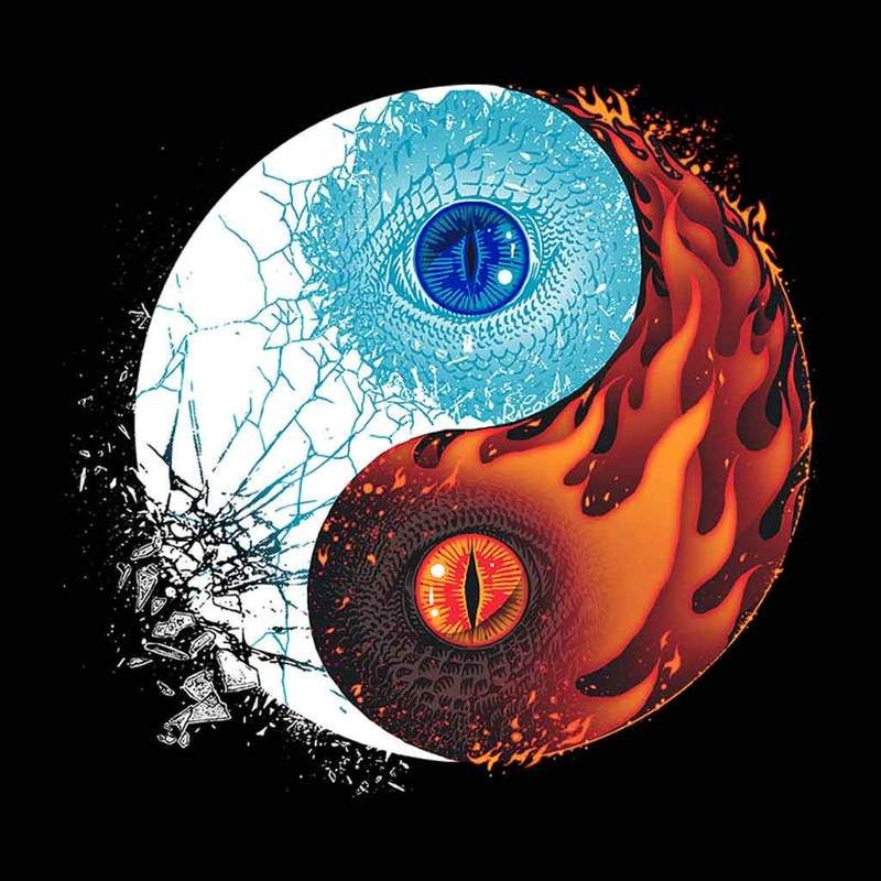 Ice And Fire Dragons Yin Yang Game Of Thrones Men S T Shirt Yin Yang Art Yin Yang Tattoos Ying Yang Art
