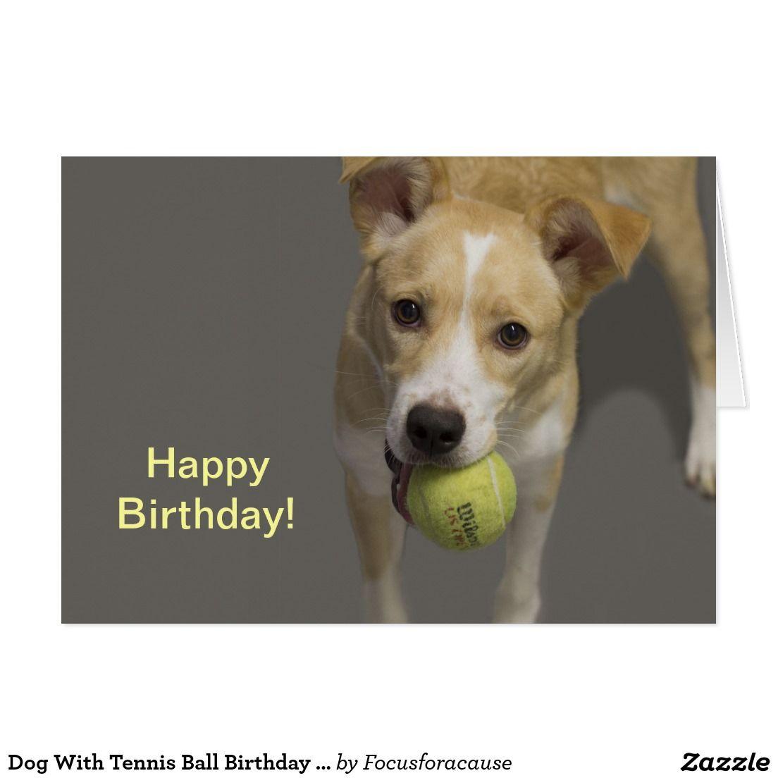 Dog With Tennis Ball Birthday Card Zazzle Com Dogs Ball