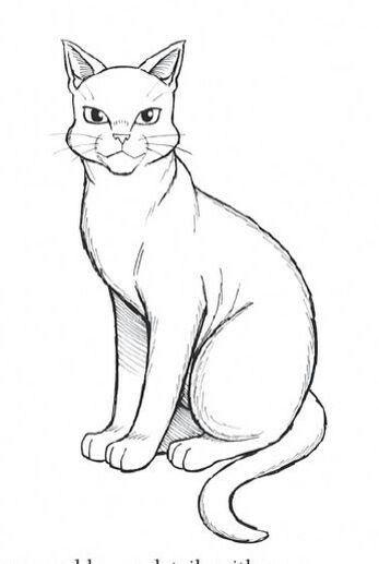 Pin Van Robin Lim Op Drawing Katten Tekening Katten Tekenen
