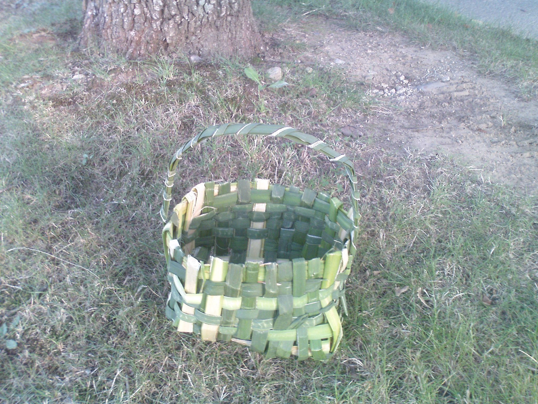 cattail basket. I needed something to pick some berries could not wait for it to dry out