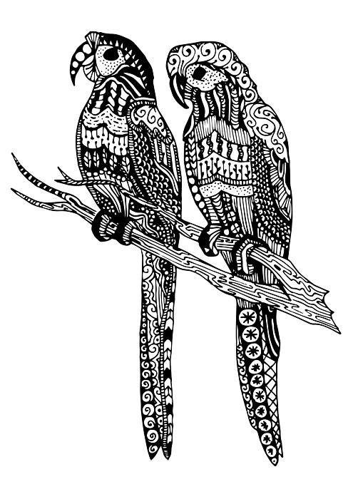 Parrot Love Art Print by Sadie Maughan | Loros | Pinterest ...