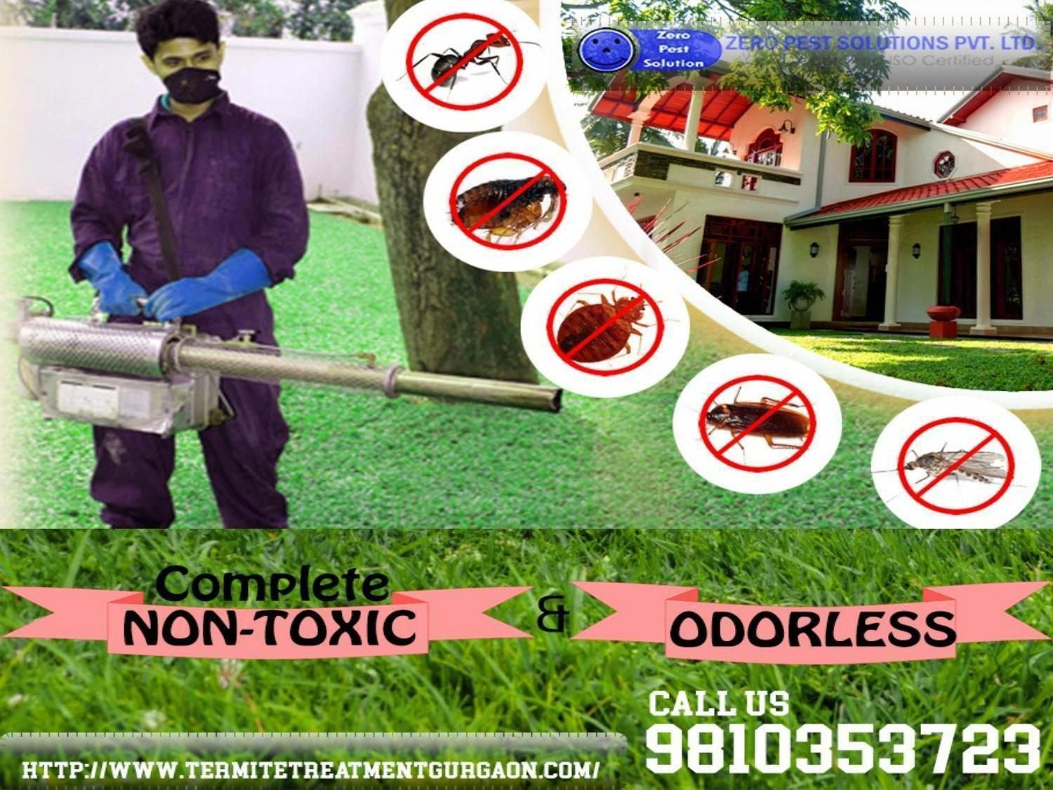 The utmost odorless and nontoxic termite pest control
