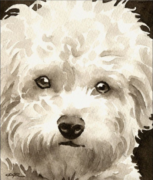 Boxer Puppy Art Print Sepia Watercolor by Artist DJR