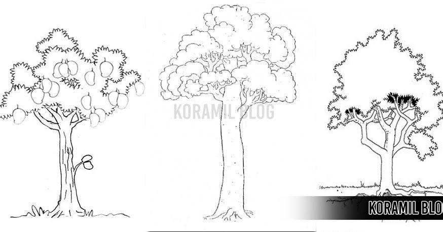 Beginilah 7 Tips Dan Trik Lolos Psikotes Tni Pernah Diminta Menggambar Pohon Ketika Psikotest Ini Dia Mengerjakan Menggambar Pohon Gambar Menggambar Orang