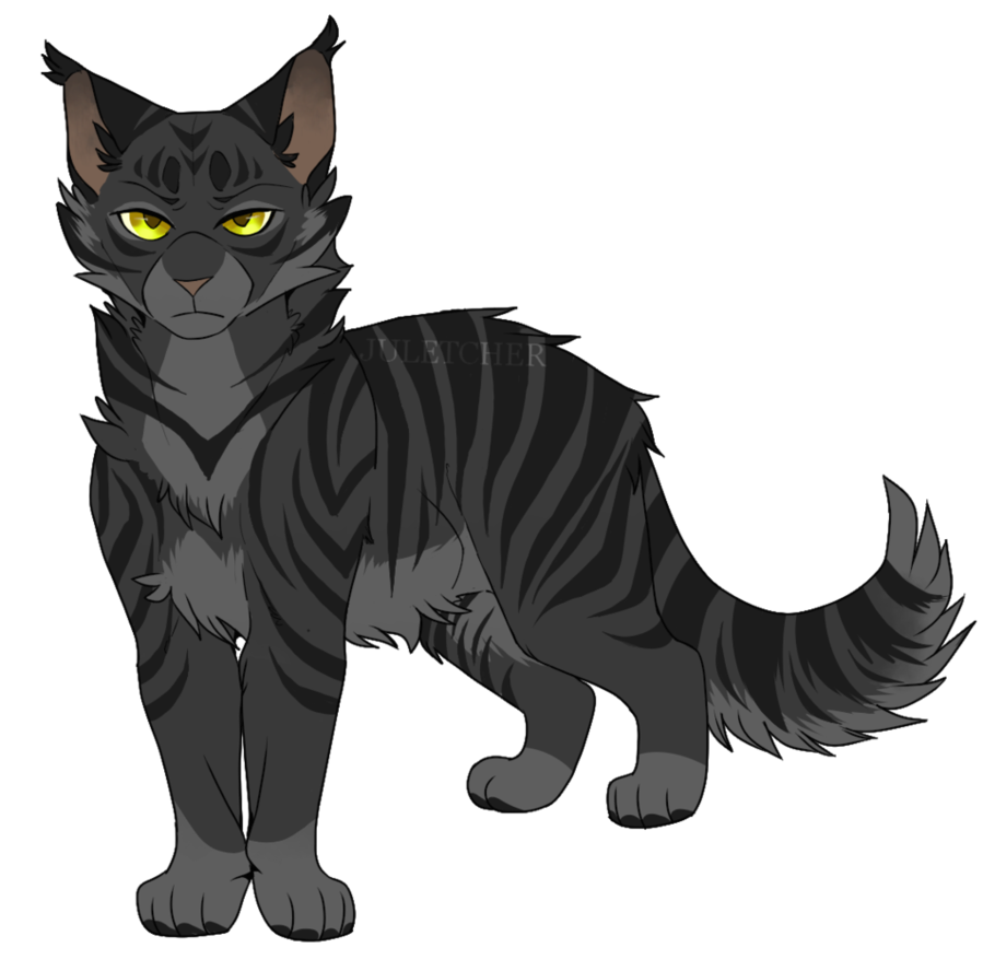 Dark Boy by julicheuer Warrior cats, Warrior cats art