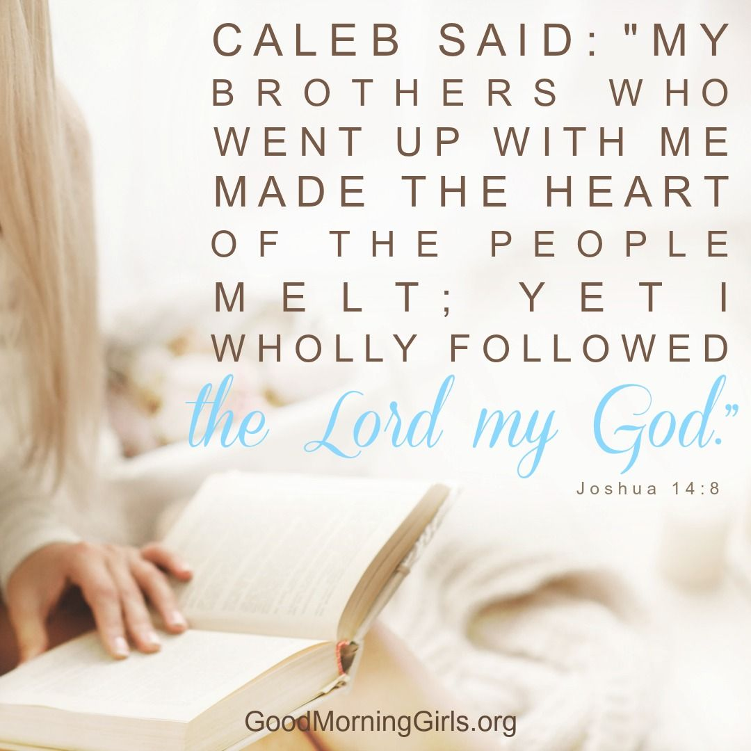 """Caleb said: """"My brothers who went up with me made the heart of the people melt; yet I wholly followed the Lord my God."""" Joshua 14:8"""