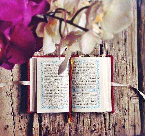 Mego Ramadan Kareem Allah رمضان كريم فانوس تهنئة احتفاﻻت سحور افطار اسﻻميات قران دعاء يارب الل Quran Book Islamic Pictures Quran Wallpaper