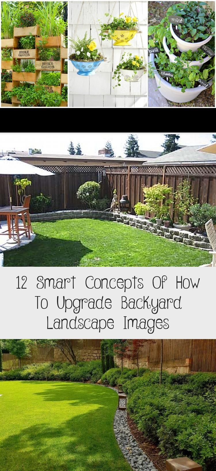 My Blog En Blog In 2020 Small Backyard Gardens Small Backyard Landscaping Backyard Garden