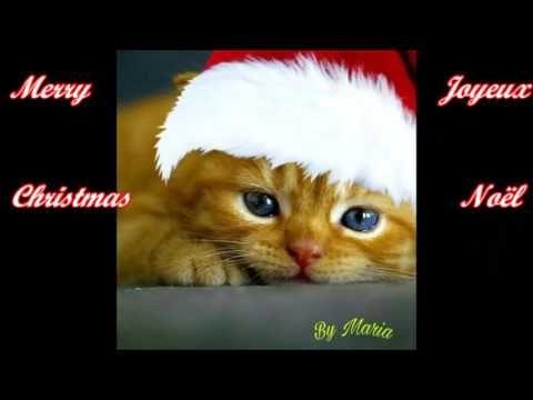 Jingle Bells rock - Merry Christmas