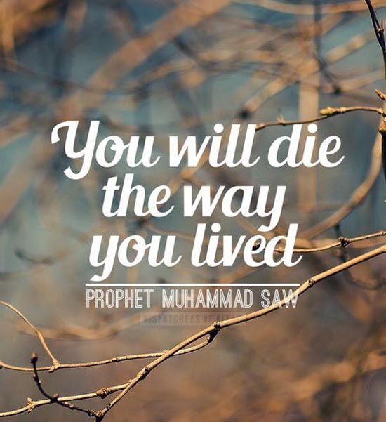 50 Beautiful Islamic Quotes About Life With Pictures Life Quotes Short Islamic Quotes Islamic Quotes