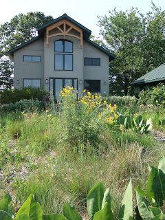 Landscaping House Landscape Landscape Design Low Maintenance Landscaping