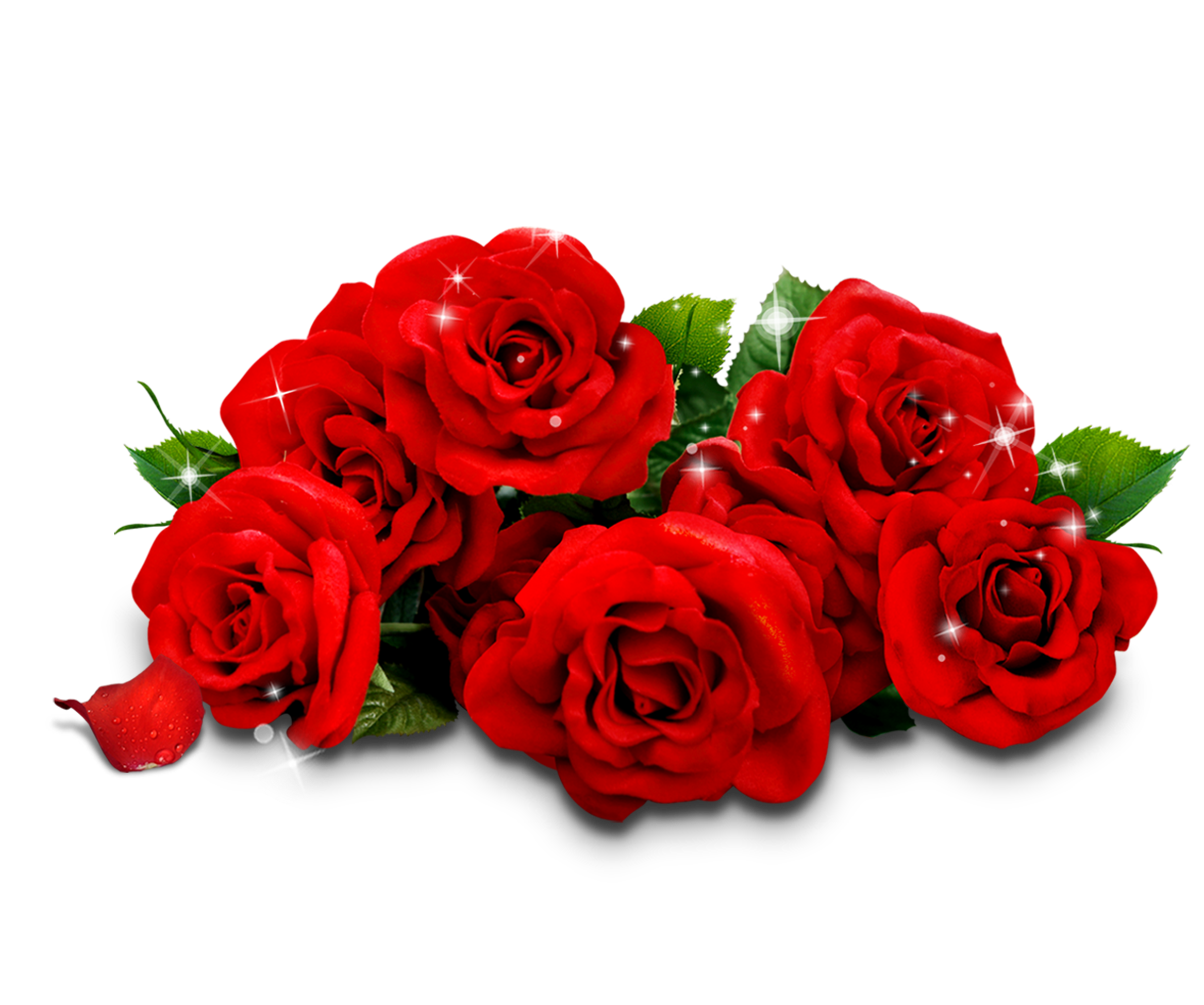 Pin On Flowers Png