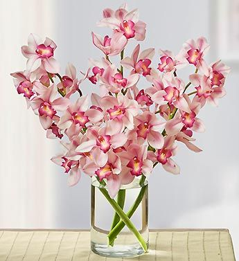 We Ve Paired Our Glamorous Bouquet Of Three Dark Pink Cymbidium Orchids With A Chic Cylinder