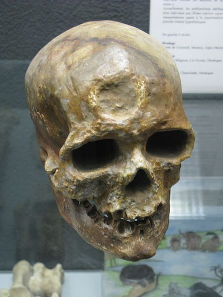 Les Eyzies De Tayac Aquitaine France The Musée National De Préhistoire Musée Cro Magnon Skull All Hallows Eve