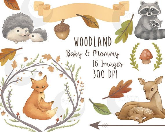 Woodland Clipart Mommy Baby Forest Animals Cute Nature Etsy Woodland Clipart Nature Watercolor Clip Art