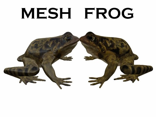 MESH FROG