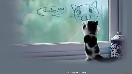 Attirant Download Fuuny Miss You Quote With Cat   Miss You Hd Wallpapers For Your  Mobile Cell