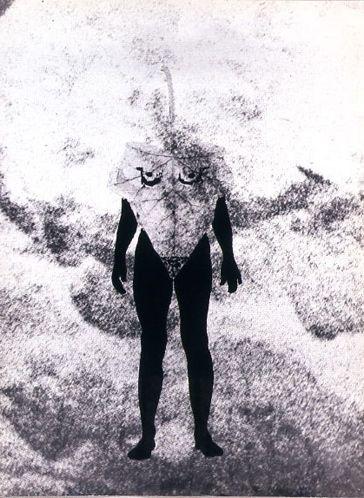 Ohne Titel (Naturgeschichte)   1975 Rayogramm