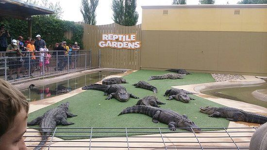 Photo of Reptile Gardens | Vacations | Pinterest | Rapid city ...