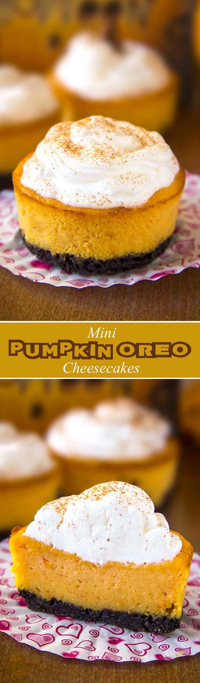 Oreo Pumpkin Mini Cheesecakes #cheesecakes