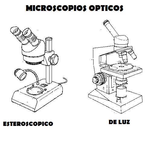 Microscopios Para Dibujar Faciles Imagui Character Fictional Characters