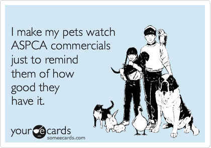 I Make My Pets Watch Aspca Commercials Just To Remind Them Of How Good They Have It Pet Watching Veterinary Humor Funny Commercial Ads